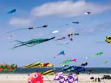 Kites on Rindby beach at the island Fanoe