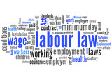 labour law (labor, employment, work) poster