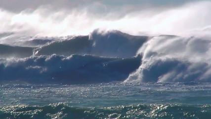 Ocean storm wind waves sea birds