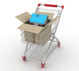 3d model house in paper shopping box and shopping cart