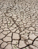 Drought Cracked Land