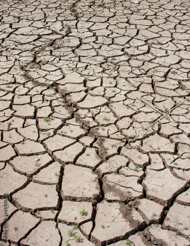 Drought Cracked Land - 66406401