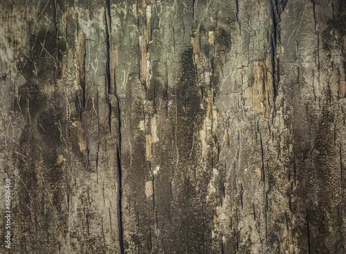 Poster Old Wooden BG