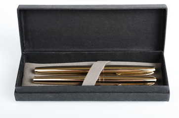 case with fountain pens