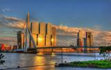 View of Rotterdam - Netherlands - 66410687
