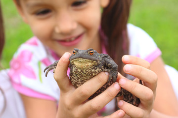 Little girl holding common toad in her hands.