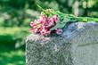 Leinwandbild Motiv Headstone in Cemetery