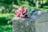 Headstone in Cemetery