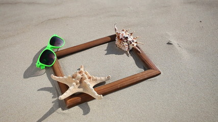 Frame with shell starfish sunglasses. HD with motorized slider.