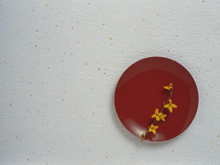 Lacquered plate