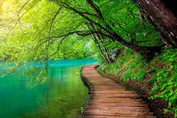Krystalicznie czysta woda i drewniana ścieżka. Jeziora Plitwickie, Chorwacja