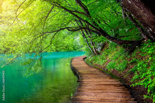 Fotobehang Watervallen Crystal clear water and wooden path . Plitvice lakes, Croatia