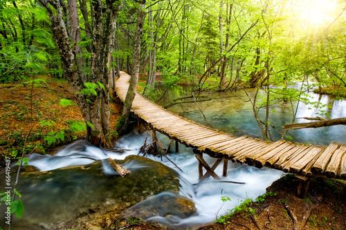Leinwanddruck Bild Deep forest stream with crystal water. Plitvice lakes, Croatia