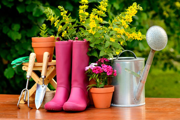 Gardening tools on wooden table and green background
