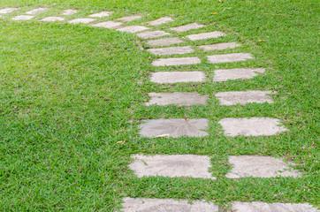 path on green grass