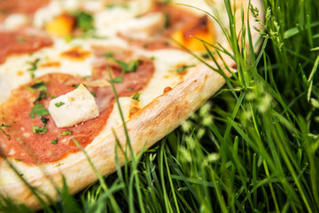 Pizza on grass