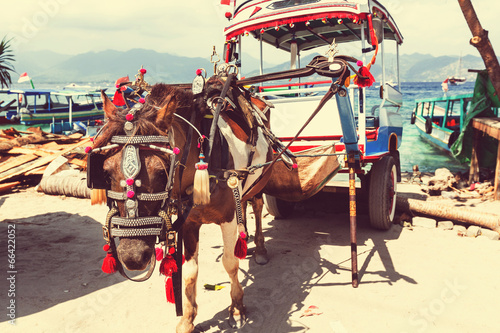 Foto op Plexiglas Indonesië Gili transport