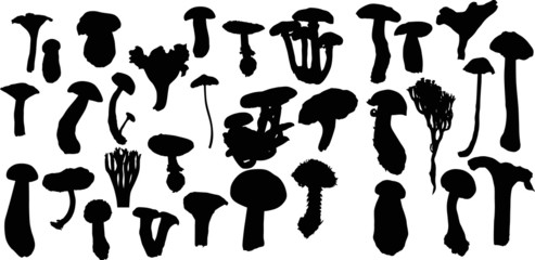 large set of isolated mushrooms outlines