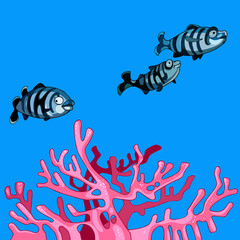 underwater striped fish and coral pink