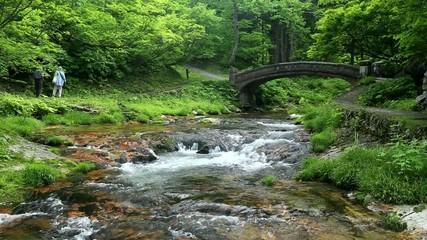 銀山川の散策