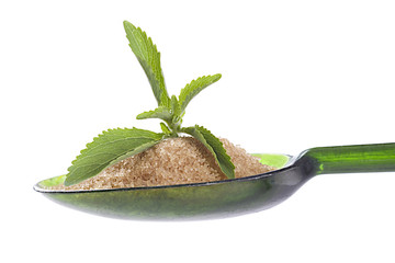 Still life of  Stevia leaf with spoon of brown sugar