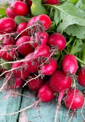 fresh radishes on wooden surface