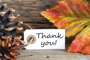 Fall Background with Thank You