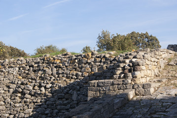 Preserved walls