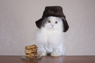 cat in the hat eats pancakes