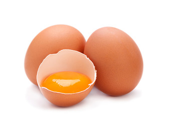 Chicken egg with yolk