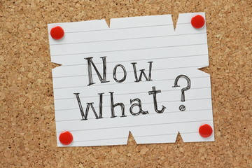 The question Now What on a cork notice board