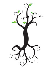 black tree with roots isolated white background