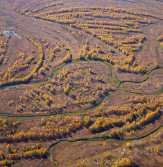 Tundra in autumn