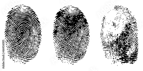 different black fingerprints, vector - 66436085