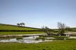 Small tarn near Gleaston, Cumbria