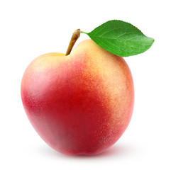 Fresh nectarine peach on white background