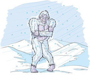 Cold Sasquatch