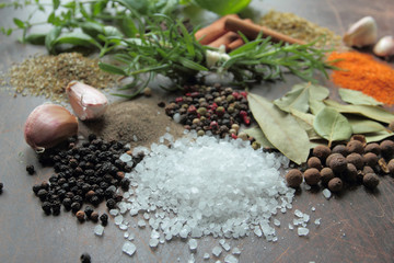 Herbs and spices. Fresh aromatic food ingredients.