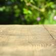 Obrazy na płótnie, fototapety, zdjęcia, fotoobrazy drukowane : Hintergrund - Holz und Garten
