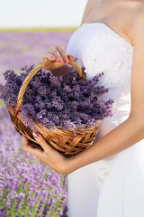 Bride holding basket with lavender flowers