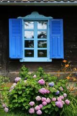 Holzfenster + Hydrangea