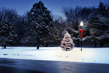 Fototapety Magically Lit Christmas Tree Glows Brightly In The Snow