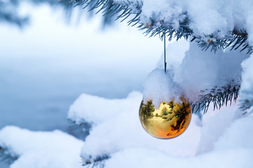 Bright Gold Ornament Hangs From Snow Covered Christmas Tree