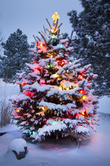 Brightly Lit Snow Covered Christmas Tree