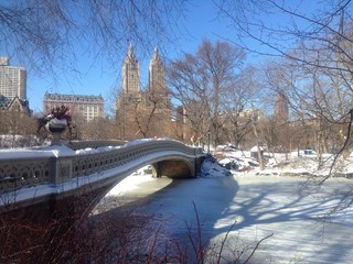 Bow bridge in the snow, Central Park, New York