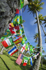 International Team Flags Palm Trees Grove Brazil