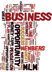 Essential_Qualities_of_a_Truly_Successful_MLM_Business_Opportuni