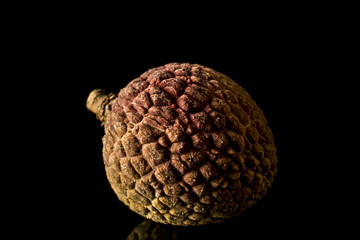 Lychee Fruit - Nut