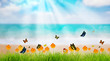 Fresh spring green grass with butterfly and flower near beach, S