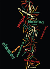 How_to_Determine_the_Quality_of_an_Online_Nursing_Program